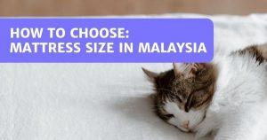 Malaysia Bed Size Guide: How To Choose The Right Bed Size